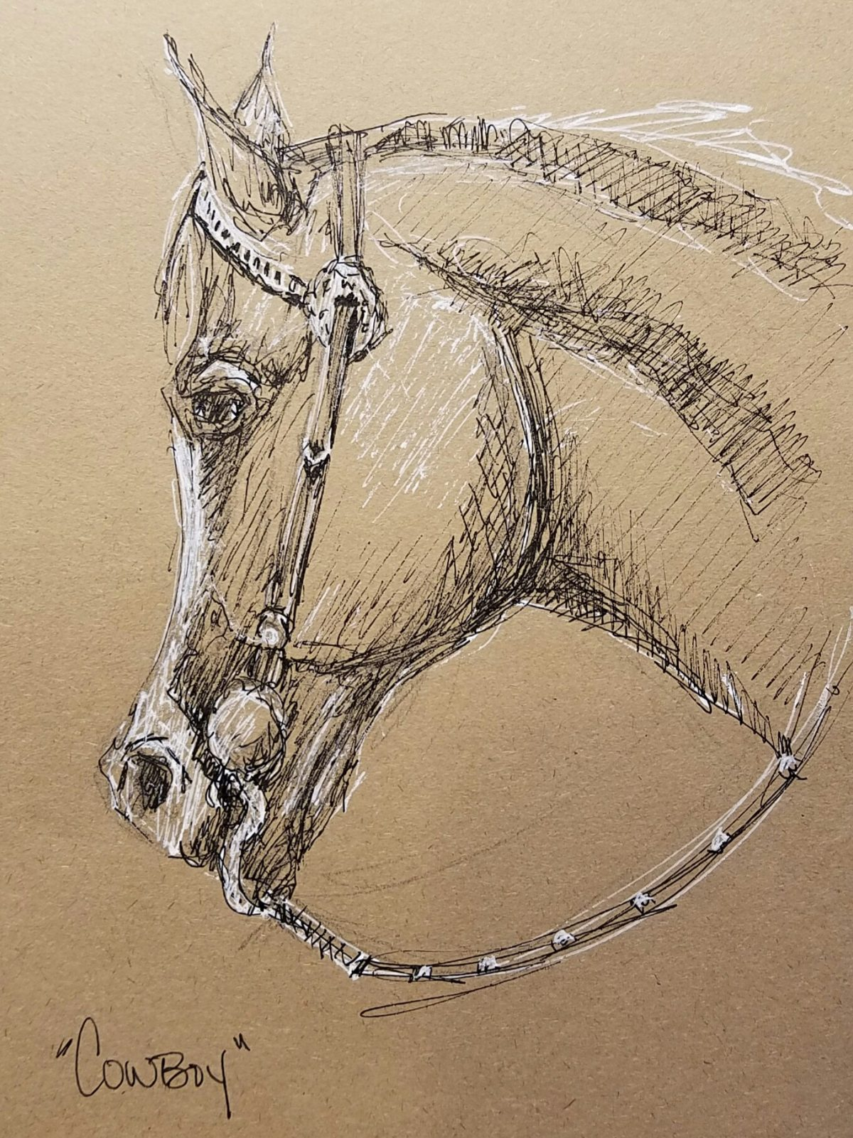 Sketching horses