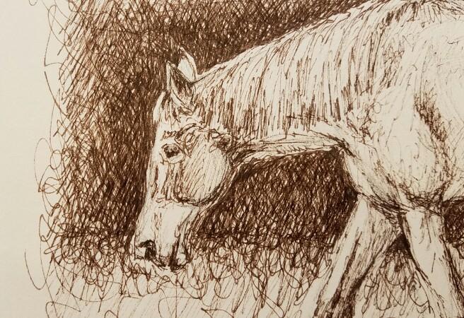 Sepia sketch detail