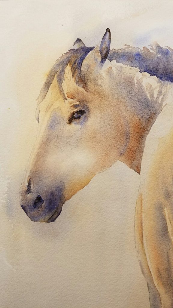 Detail of horse portrait in progress